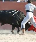 corrida_espagne