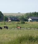 Grâce à la nouvelle loi, la fertile Ukraine peut se tourner résolument vers l'agriculture bio. © Nagatkin (Wikimédia Commons)