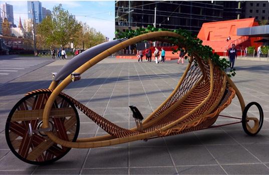 Australie on fait pousser du bambou en forme de cadre de - Faire pousser du bambou ...