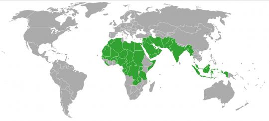Carte mondiale de la polygamie.