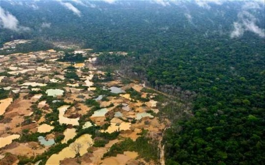 Exploitation aurifère en Amazonie.