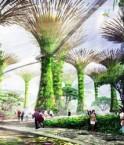 Quel sacrifice économique pour avoir son central park ?