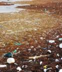 Toxic-Tours, partez à la découverte des rivières les plus polluées !