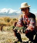 Les indiens boliviens ne seront pas les gardes forestiers des entreprises étrangères