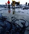 Marée noire écosse