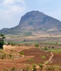 agriculture mozambique
