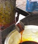 © Palm Oil Production
