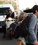 Sécurité routière: Jean Todt tire la sonnette d'alarme