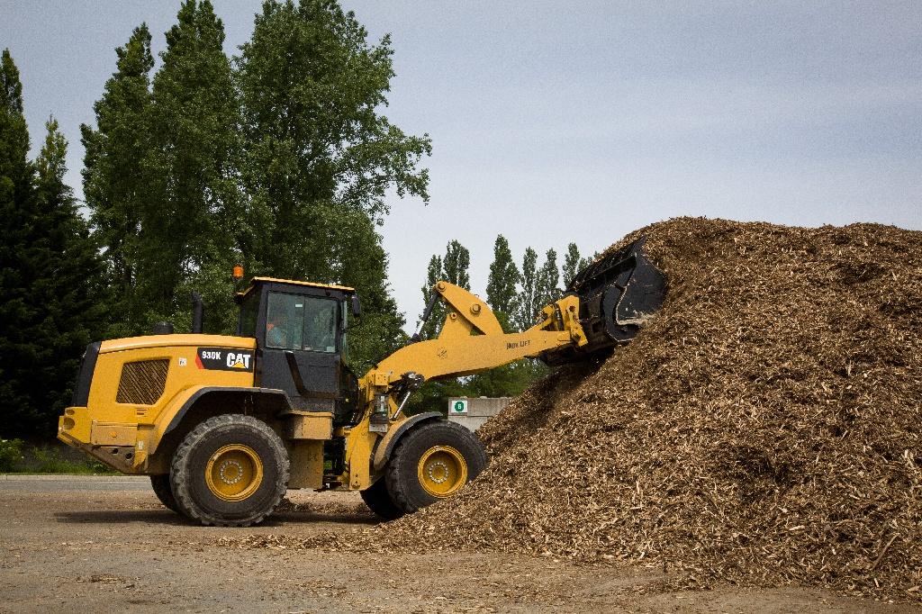 Biomasse : une source d'énergie millénaire qui a de l'avenir