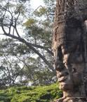 Forêt cambodgienne. © Igun! (Flickr.com)
