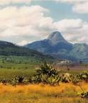 Terres agricoles au nord du Mozambique.
