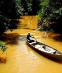 Le fleuve Amazone. © Ana_Cotta (Flickr.com)