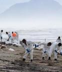 Nettoyage du pétrole. © Getty Images