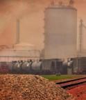 Centrale à biocombustibles. © TumblingRun (Flickr.com)
