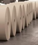 Rouleaux de papier de palme. © Pulpco Paper Technologies Sdn Bhd.