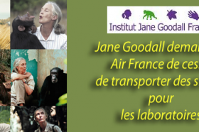 STOP TRANSPORT AIR FRANCE