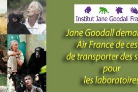 STOP TRANSPORT AIR FRANCE